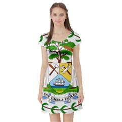 Coat of Arms of Belize Short Sleeve Skater Dress