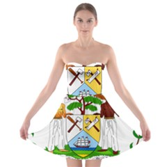 Coat of Arms of Belize Strapless Bra Top Dress