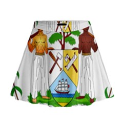 Coat Of Arms Of Belize Mini Flare Skirt