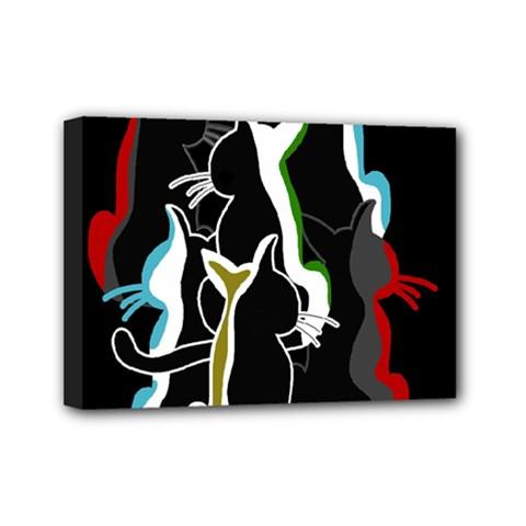 Street cats Mini Canvas 7  x 5