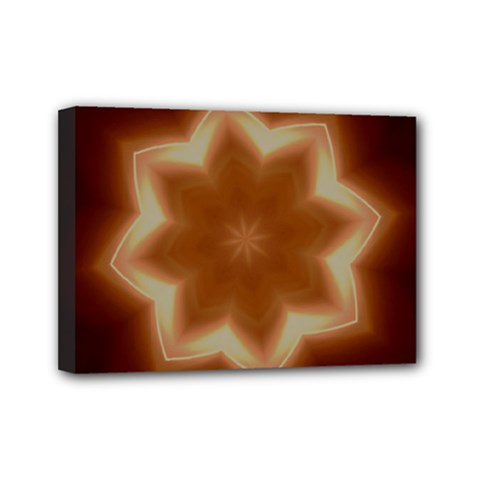 Christmas Flower Star Light Kaleidoscopic Design Mini Canvas 7  x 5