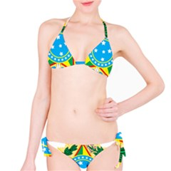 Coat of Arms of Brazil, 1971-1992 Bikini Set