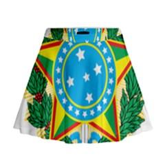 Coat of Arms of Brazil, 1971-1992 Mini Flare Skirt
