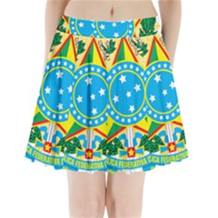 Coat of Arms of Brazil, 1971-1992 Pleated Mini Skirt