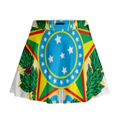 Coat of Arms of Brazil, 1968-1971 Mini Flare Skirt