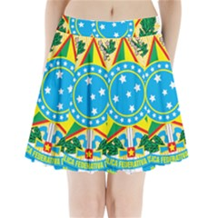 Coat of Arms of Brazil, 1968-1971 Pleated Mini Skirt