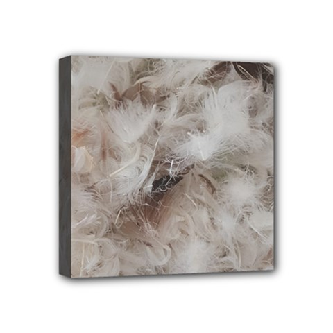 Down Comforter Feathers Goose Duck Feather Photography Mini Canvas 4  x 4