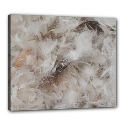 Down Comforter Feathers Goose Duck Feather Photography Canvas 24  x 20