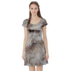 Down Comforter Feathers Goose Duck Feather Photography Short Sleeve Skater Dress