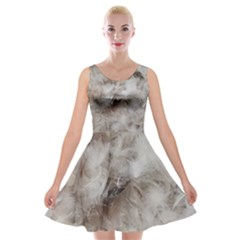 Down Comforter Feathers Goose Duck Feather Photography Velvet Skater Dress