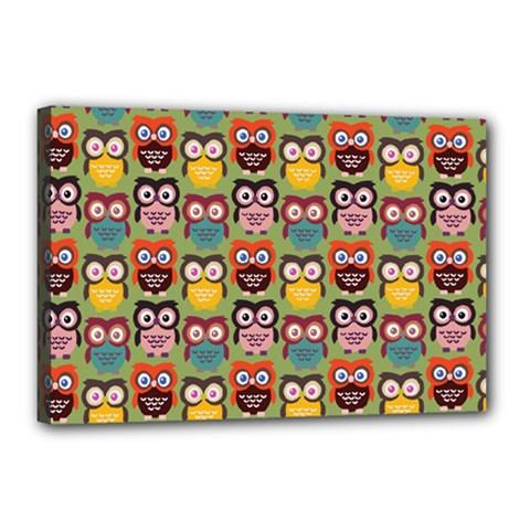 Eye Owl Colorful Cute Animals Bird Copy Canvas 18  x 12
