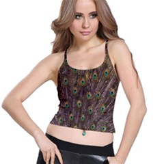 Purple Peacock Feather Wallpaper Spaghetti Strap Bra Top
