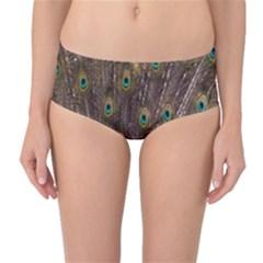 Purple Peacock Feather Wallpaper Mid-Waist Bikini Bottoms