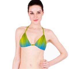 Yellow Blue Green Bikini Top