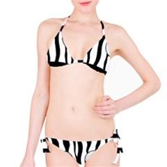 Blue Eye Zebra Bikini Set
