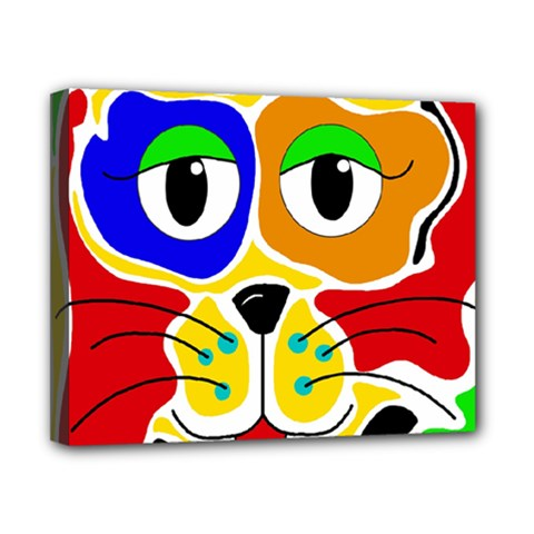 Colorful cat Canvas 10  x 8