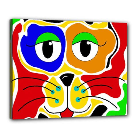 Colorful cat Canvas 20  x 16
