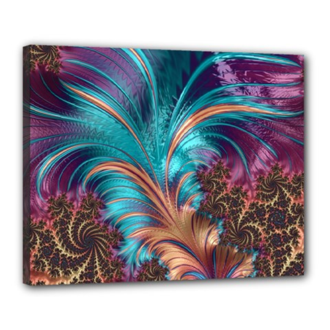 Feather Fractal Artistic Design Canvas 20  x 16