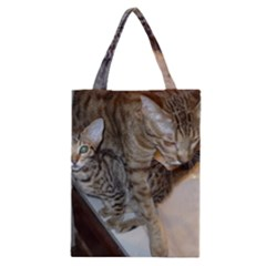 Ocicat Tawny Kitten With Cinnamon Mother  Classic Tote Bag