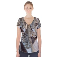 Ocicat Tawny Kitten With Cinnamon Mother  Short Sleeve Front Detail Top