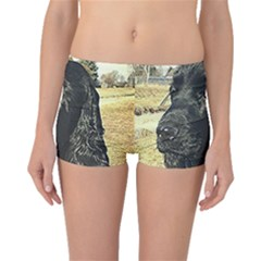 Black English Cocker Spaniel  Boyleg Bikini Bottoms