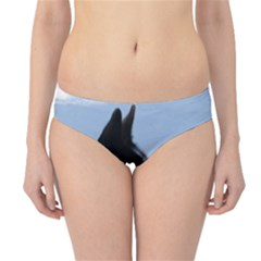 Karelian Bear Dog Hipster Bikini Bottoms