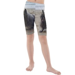 Keeshond On Beach  Kids  Mid Length Swim Shorts