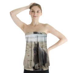 Keeshond On Beach  Strapless Top
