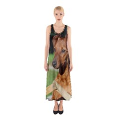 Min Pin On Gate  Sleeveless Maxi Dress
