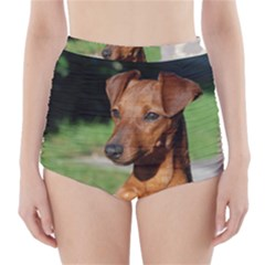 Min Pin On Gate  High-Waisted Bikini Bottoms