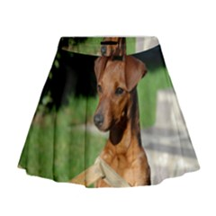 Min Pin On Gate  Mini Flare Skirt