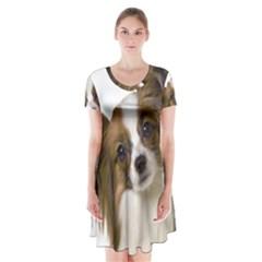Papillon Short Sleeve V Neck Flare Dress