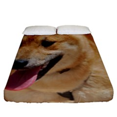 4 Shiba Inu Fitted Sheet (Queen Size)