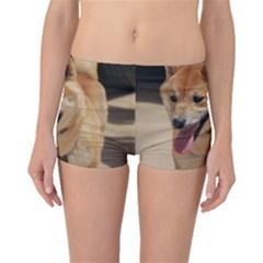 4 Shiba Inu Boyleg Bikini Bottoms