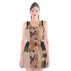 4 Shiba Inu Scoop Neck Skater Dress