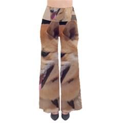 4 Shiba Inu Pants