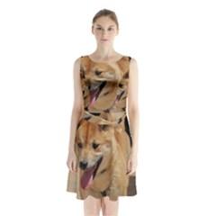 4 Shiba Inu Sleeveless Chiffon Waist Tie Dress