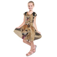 4 Shiba Inu Kids  Short Sleeve Dress