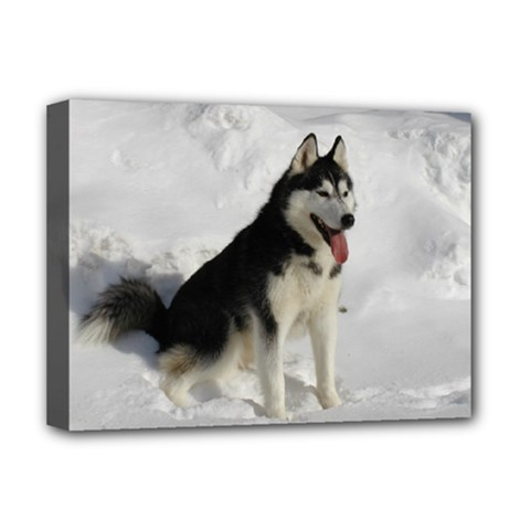 Siberian Husky Sitting in snow Deluxe Canvas 16  x 12