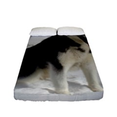 Siberian Husky Sitting in snow Fitted Sheet (Full/ Double Size)