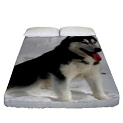 Siberian Husky Sitting in snow Fitted Sheet (King Size)