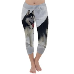 Siberian Husky Sitting in snow Capri Winter Leggings
