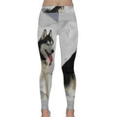 Siberian Husky Sitting in snow Classic Yoga Leggings