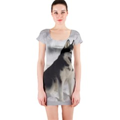 Siberian Husky Sitting in snow Short Sleeve Bodycon Dress