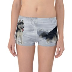Siberian Husky Sitting in snow Boyleg Bikini Bottoms