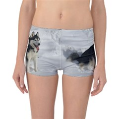 Siberian Husky Sitting in snow Reversible Bikini Bottoms