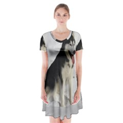Siberian Husky Sitting in snow Short Sleeve V-neck Flare Dress