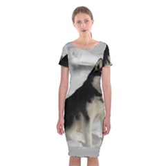 Siberian Husky Sitting in snow Classic Short Sleeve Midi Dress