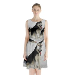 Siberian Husky Sitting in snow Sleeveless Chiffon Waist Tie Dress