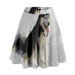 Siberian Husky Sitting in snow High Waist Skirt